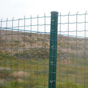 养鸡用什么样的护栏网